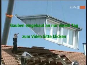 gaubenvideo